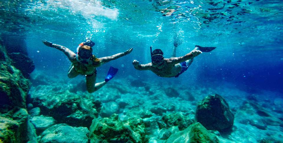 Two people snorkeling around a coral reef